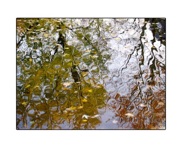 fall1710.jpg