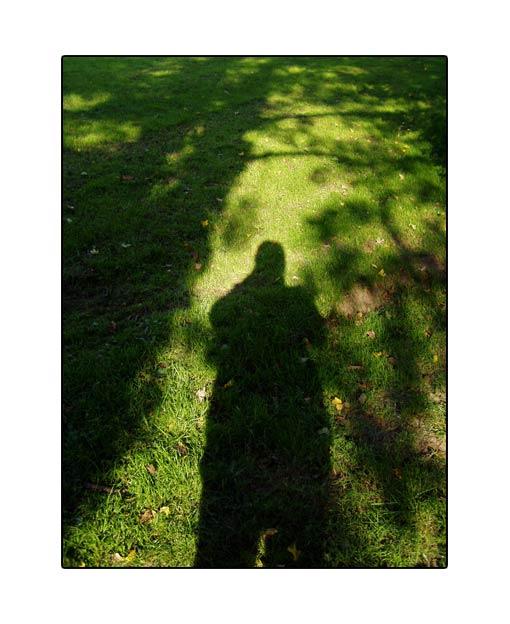 shadow07.jpg