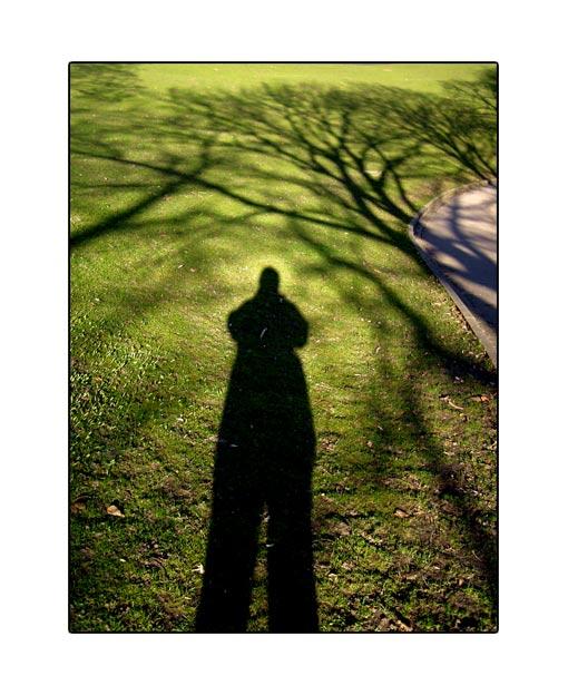 shadow14.jpg