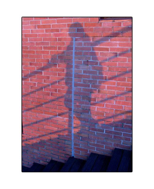 shadow17.jpg