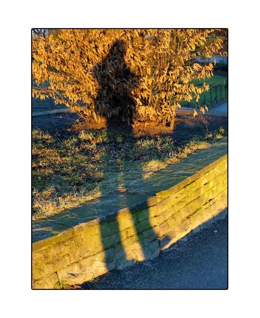 shadow20.jpg